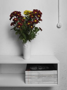 Oliver Nanzig: Office Flowers